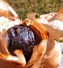 黒ニンニクの作り方&発酵床の作り方&おまけレシピ
